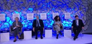 WCO urges for partnership to combat illicit trafficking of cultural heritage in Davos