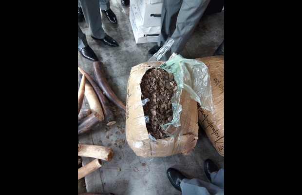 70 kg of pangolin scales seized by Nigeria Customs on 17 August 2017