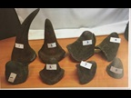 Rhino horns seized by Namibia Customs in September 2017