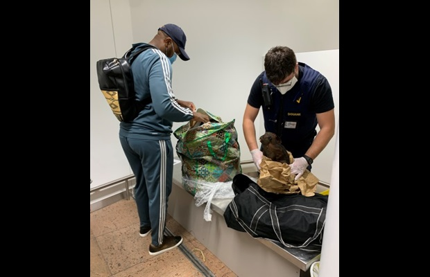 Belgium Customs seized bushmeat from several passengers at the airport, arriving from Cameroon and the Democratic Republic of the Congo (Photo: Courtesy of Belgium Customs) .